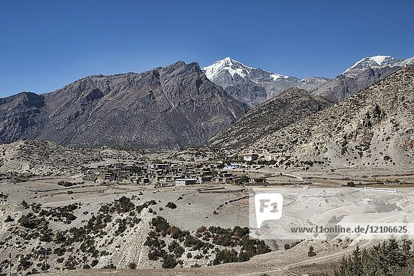 The beautiful Tibetan stone village of Ngawal and Chulu East peak  Upper Mustang  Nepal.