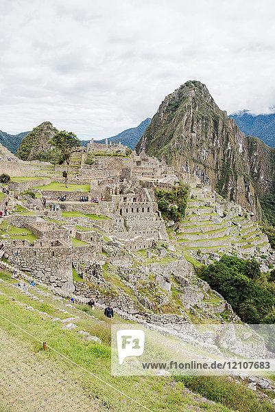 Machu Picchu  Cusco  Peru  South America