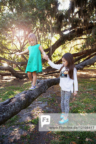 Girl holding hands with sister walking on tree branch