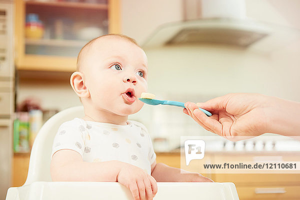 Baby boy sitting in high chair  mother feeding him with spoon