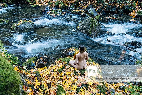 Frau  die sich mit der Natur verbindet