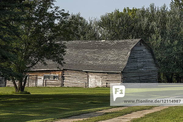 A log barn with leaning walls and a weathered roof; Manitoba  Canada