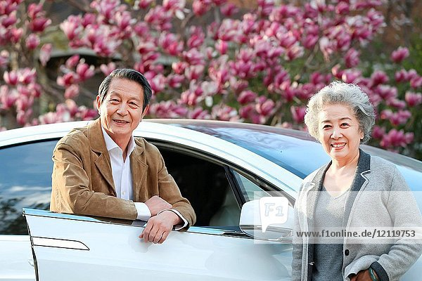 The old couple stood by the car