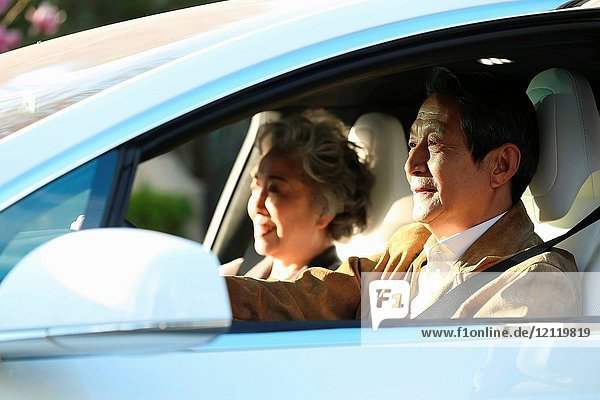 Old couples drive by car
