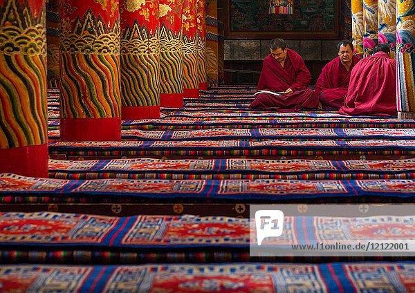 Monks praying and meditating inside Longwu monastery  Tongren County  Longwu  China.