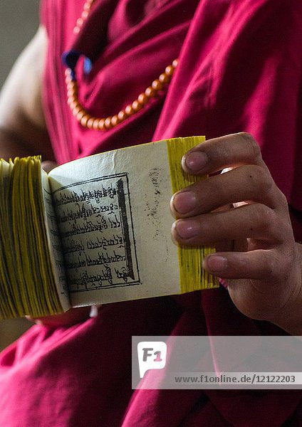Monk showing some tibetan scriptures printed from wooden blocks in the monastery traditional printing temple  Gansu province  Labrang  China.