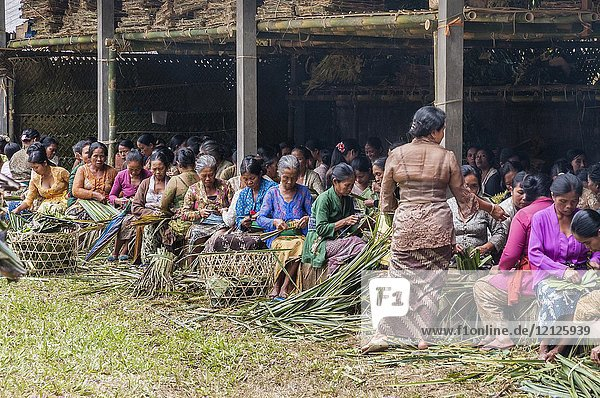 Women in the village of Tegalalang  making baskets to carry offerings at a traditional  communal cremation ritual  Tegalalang  Gianyar  Bali  Indonesia.