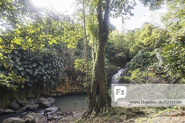 Annandale falls Grenada Caribbean.