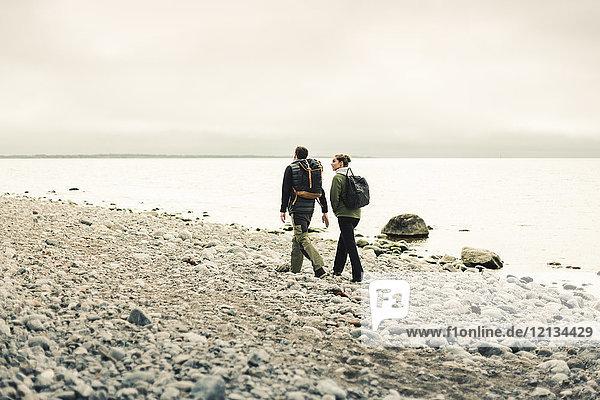Rückansicht eines Paares  das entlang der felsigen Küste in Stockholm  Schweden  wandert.