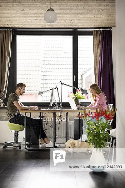 Mann und Frau mit Hund arbeiten zu Hause am Schreibtisch