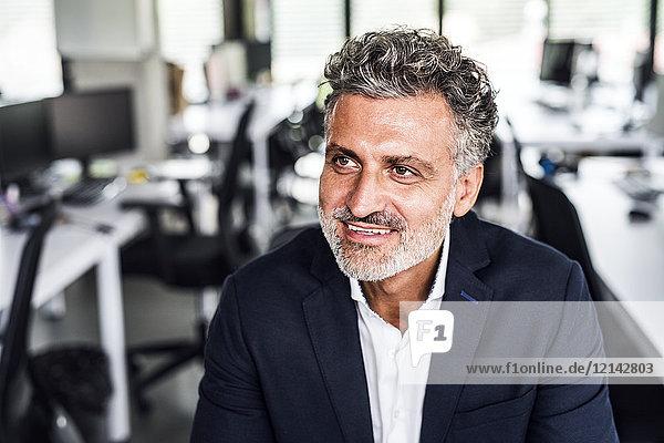 Porträt eines lächelnden reifen Geschäftsmannes im Büro