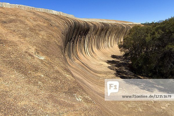Wave Rock is a natural rock formation that is shaped like a tall breaking ocean wave. The 'wave' is about 14 m (46 ft) high and around 110 m (360 ft) long. It forms the north side of a solitary hill  which is known as 'Hyden Rock'. Wave Rock Country  Western Australia  Australia.