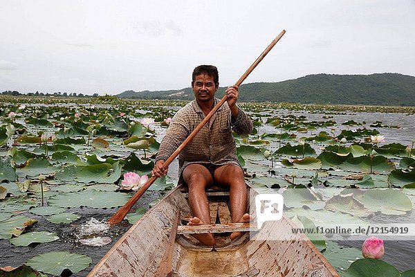 Lotus farmer on Kamping Puoy Lake.