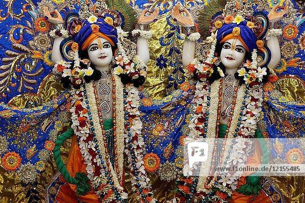 Gaura Nitai murthis in Krishna-Balaram temple.