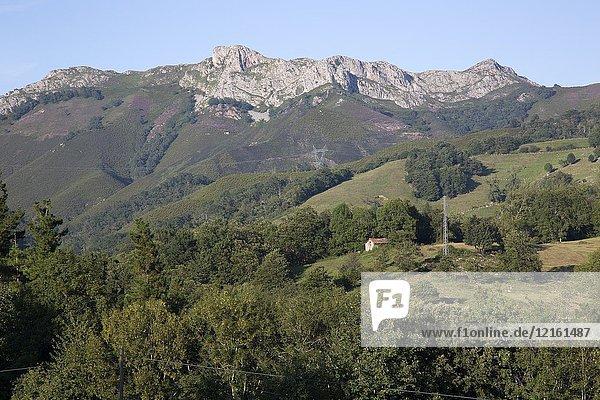 Picos de Europa Mountain Range outside Labra  Austurias  Spain.