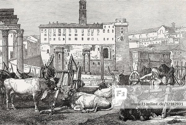 The Roman Forum or Forum Romanum  Rome  Italy  19th Century.
