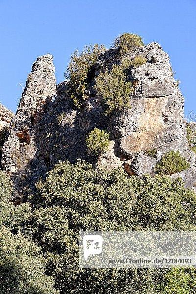 Cliffs at canyon of river Dulce. Guadalajara. Spain.