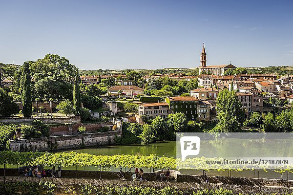 View of Madeleine's Church and Tarn river from Berbie Palace  Albi (Tarn Department  Occitanie Region  France)