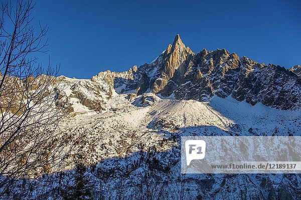Nature mountain and snow. Chamonix Mont Blanc  Auvergne-Rhône-Alpes  department of Upper Savoy. France Europe.