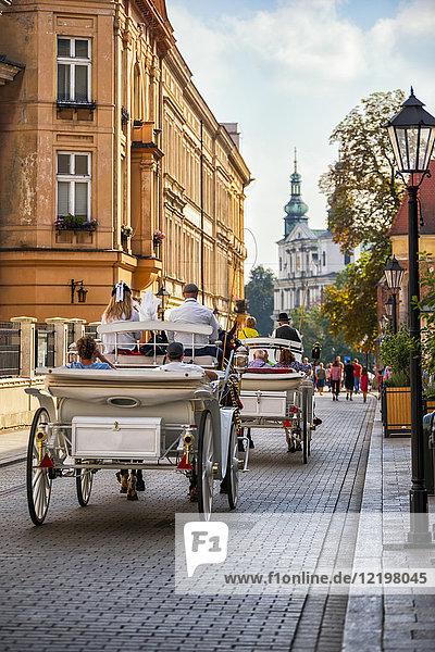 Polen  Krakau  Altstadt  Kutschen