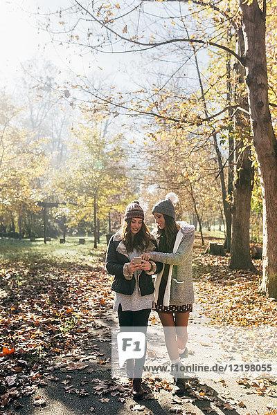 Zwei Frauen mit Handy im Herbstwald unterwegs