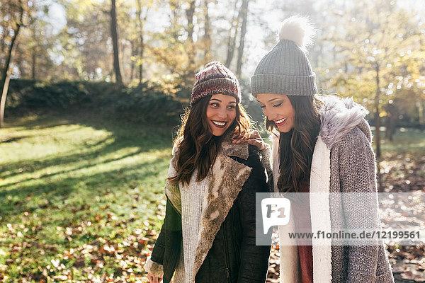 Zwei hübsche Frauen  die in einem herbstlichen Wald spazieren gehen.