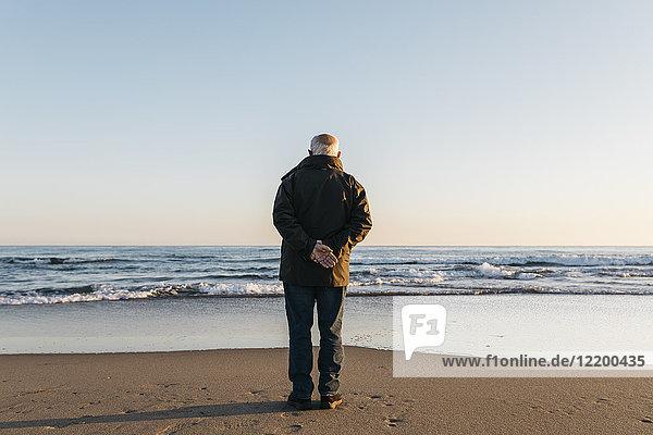 Senior Mann mit Blick aufs Meer  Rückansicht