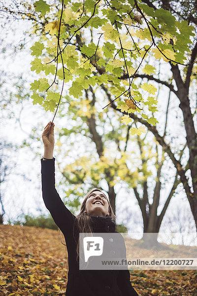 Glückliche junge Frau im Herbstwald