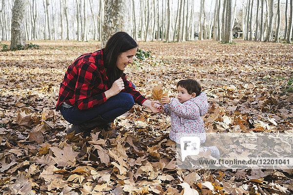 Mutter und Baby spielen mit Herbstblättern im Park