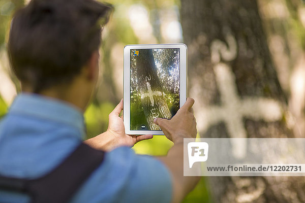 Back view of man taking photos with tablet in the forest
