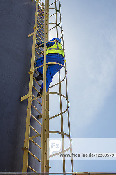 South Africa  Cape town  Construction worker climbing up ladder