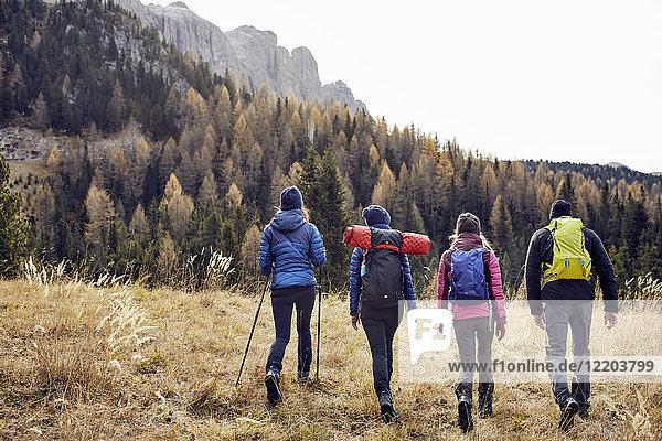 Gruppe von Freunden beim Wandern in den Bergen