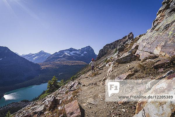 Woman hiker on the Alpine Circuit Trail at Lake O'Hara  Yoho National Park  UNESCO World Heritage Site  British Columbia  Canadian Rockies  Canada  North America