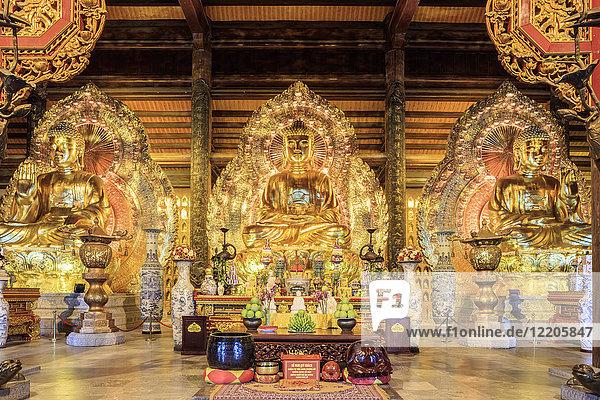 Gia Sinh  Buddhas inside a pagoda at Bai Dinh Mahayana Buddhist Temple near Tam Coc  Ninh Binh  Vietnam  Indochina  Southeast Asia  Asia