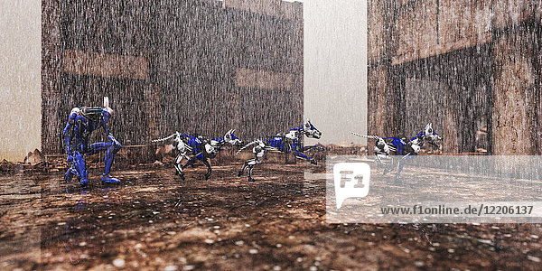 Robot dogs running in rain
