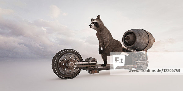 Raccoon riding futuristic skateboard