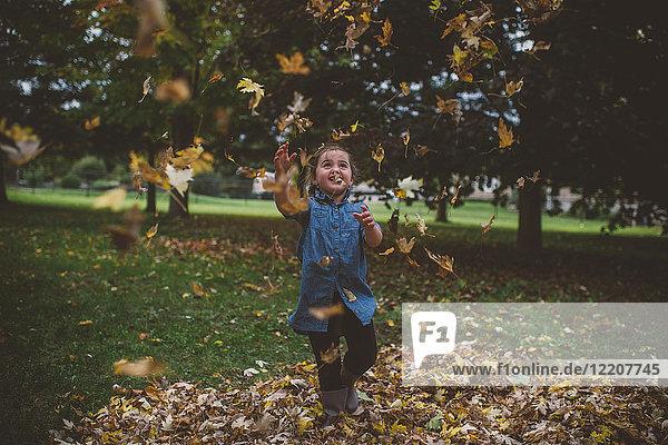 Mädchen im Park wirft Herbstblätter