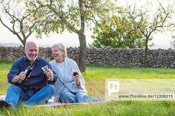 Älteres Ehepaar im Freien  auf einer Decke sitzend  genießt ein Glas Wein