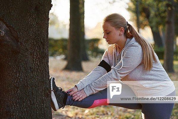 Kurvige junge Frau  die im Park trainiert  berührt mit den Zehen den Baumstamm