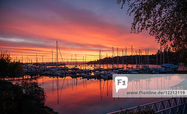 Boats in harbour at sunset  Bainbridge  Washington  USA
