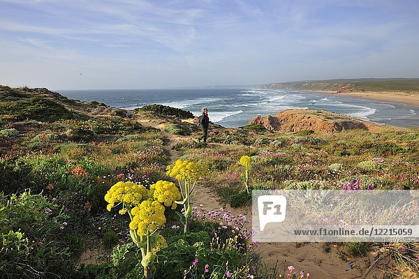 Spring in Carrapateira. Sudoeste Alentejano and Costa Vicentina Nature Park  the wildest atlantic coast in Europe. Portugal.