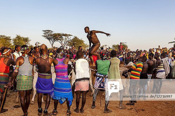 A Young Hamar Tribesman Takes Part In 'coming of age'. Bull Jumping Ceremony  Dimeka  Omo Valley  Ethiopia.
