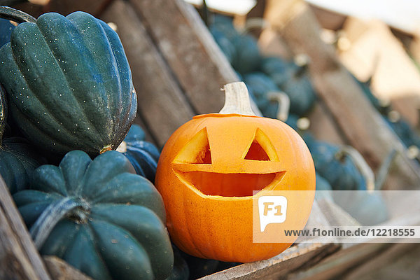 Geschnitzter Halloween-Kürbis in Kiste mit Gemüsekürbissen