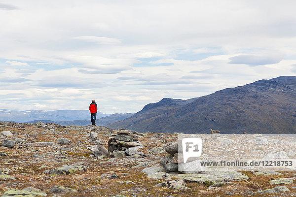 Männlicher Wanderer mit Blick auf die Berglandschaft  Rückansicht  Jotunheimen-Nationalpark  Lom  Oppland  Norwegen