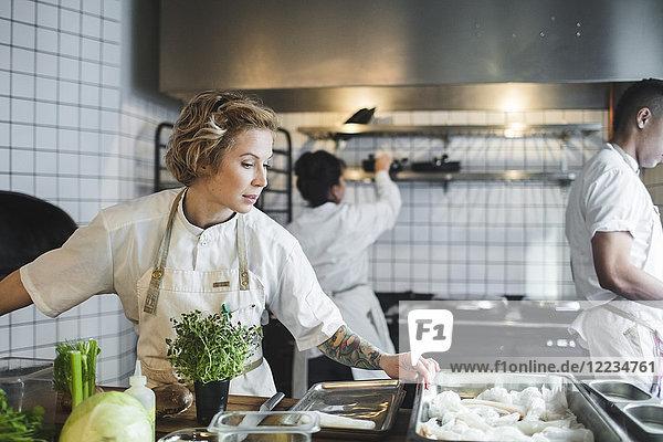 Köchin beim Kochen in der Küche gegen Kollegen im Restaurant