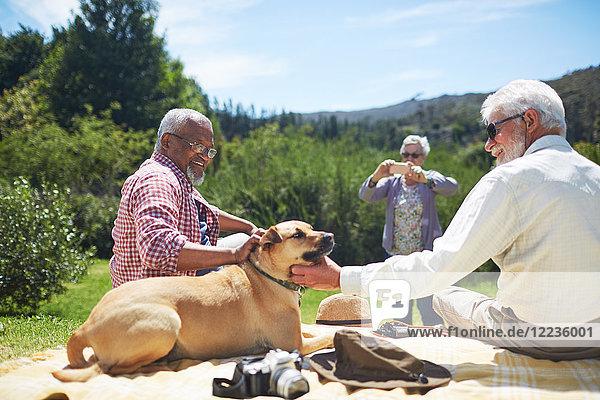 Seniorenfreunde streicheln Hund auf sonniger Sommer-Picknickdecke