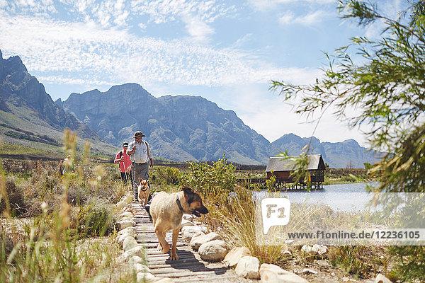 Wanderer und Hunde auf dem Wanderweg entlang des sonnigen Sommersees