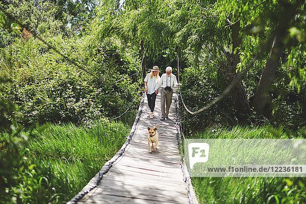 Aktives Seniorenpaar und Hundeüberquerung zwischen üppig grünen Bäumen