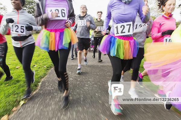 Charity-Läufer,  die im Tutus laufen