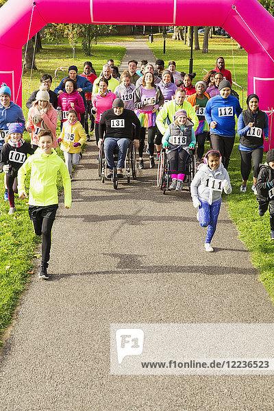 Läuferinnen und Läufer beim Benefizlauf im Park